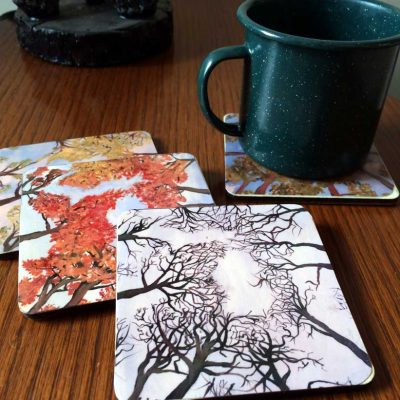 Michigan 4 Seasons Coasters