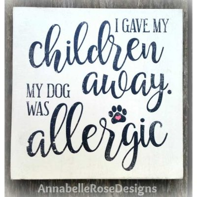 allergic-dog