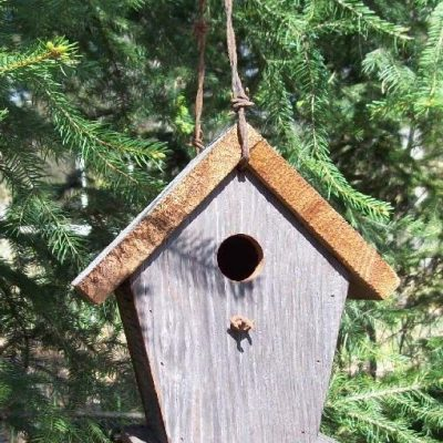 birdhouse-natural-CP-117