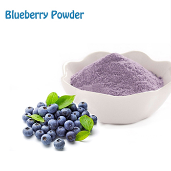 Fruit Advantage Wild Blueberry Powder