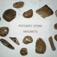 Petoskey Stone Magnets