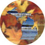 Michigan Image 2 Fall Leaves