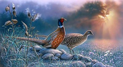 Evening Meadow Giclee Print