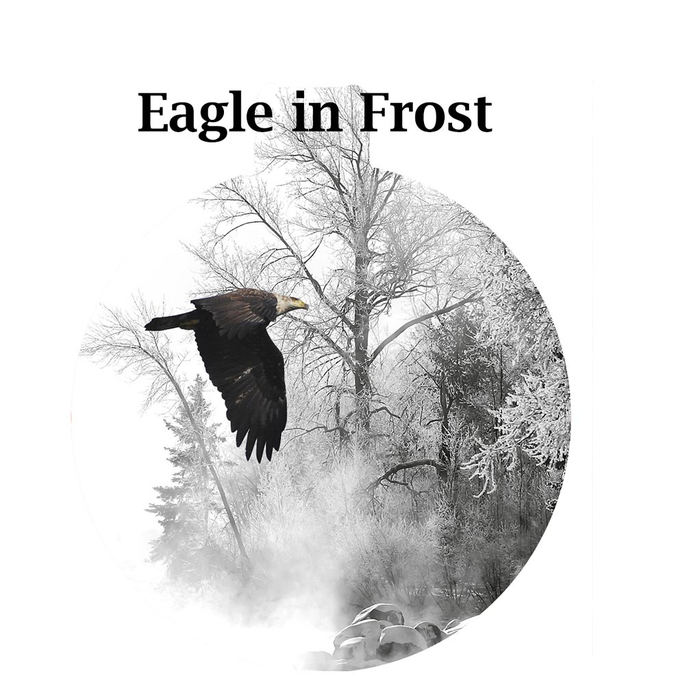 Metal Photo Ornament Eagle in Frost