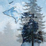 Michigan 4 Pine Trees