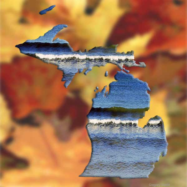 Michigan 2 Fall Leaves