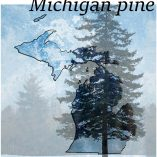 michigan-pine