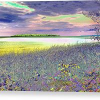 Au Train Island Canvas Print
