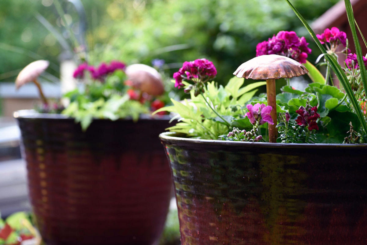 Mushroom Sculpture in Potted Plant